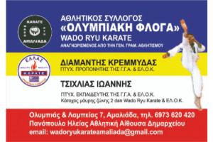 ΟΛΥΜΠΙΑΚΗ ΦΛΟΓΑ - Αθλητικός Σύλλογος